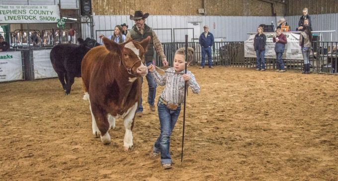 Kadynce Kennedy claims cattle category awards