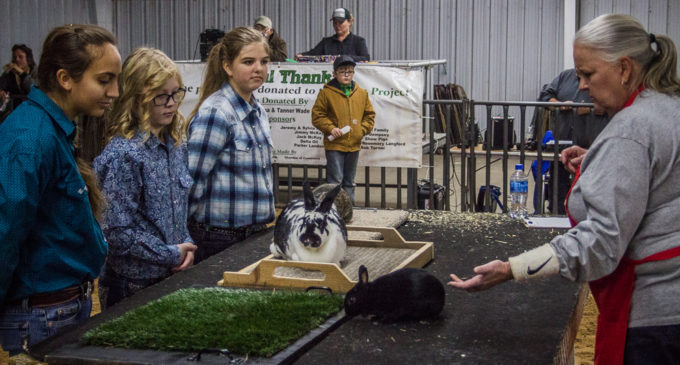 Rabbit Division kicks off 60th Annual SCJLS
