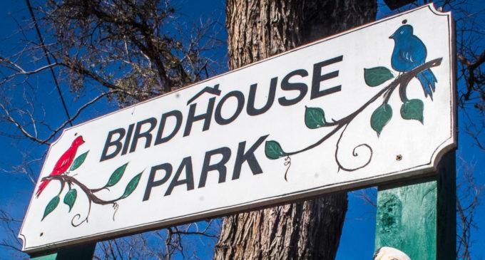 Fourth annual Birdhouse Contest kicks off