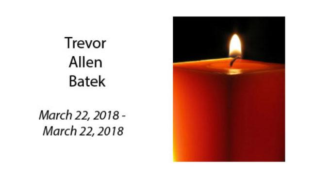 Trevor Allen Batek