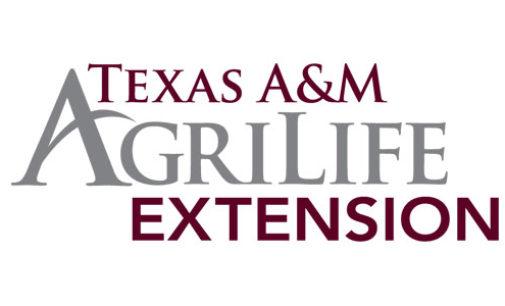 AgriLife Extension to offer kids summer workshops