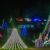 Possum Hollow Christmas Lights