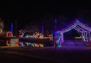 Possum Hollow Christmas Lights