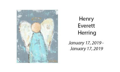 Henry Everett Herring