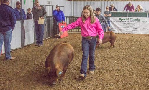 Daylen Alford, Landree Wade win top hog honors