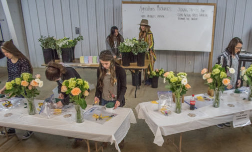 Shelby Givens, Jimmy McKay win floral, ag mechanics contests