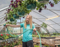 Annual BHS plant sale set for Saturday, with pre-sale scheduled for Friday afternoon