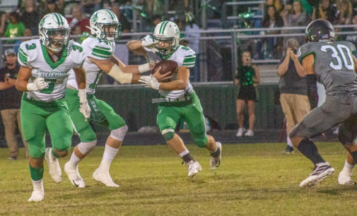 Buckaroos wrap up pre-district play with loss to Lions
