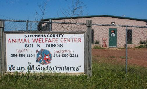 Breckenridge co-interim city managers seek input for saving animal shelter, senior center