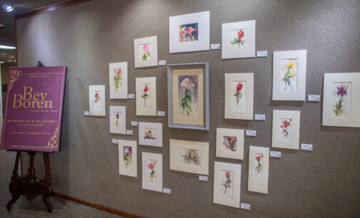 Bev Boren exhibit extended through March 31 at Breckenridge Fine Arts Center