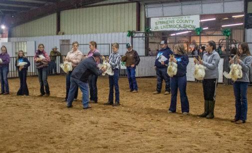 SCJLS: Chloe Pugh, Hannah Moreno take top honors in Poultry Division