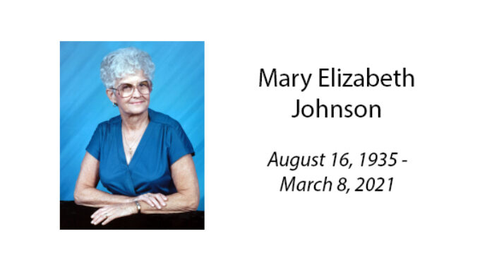 Mary Elizabeth Johnson