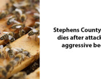 Stephens County man dies after bees attack him while he was mowing lawn