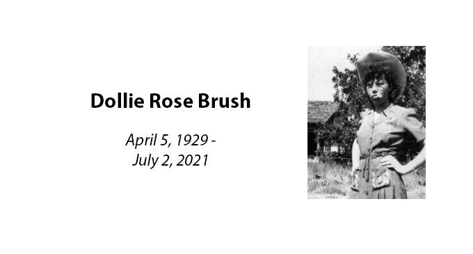 Dollie Rose Brush