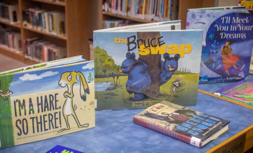 Breckenridge Library adds new books to collection